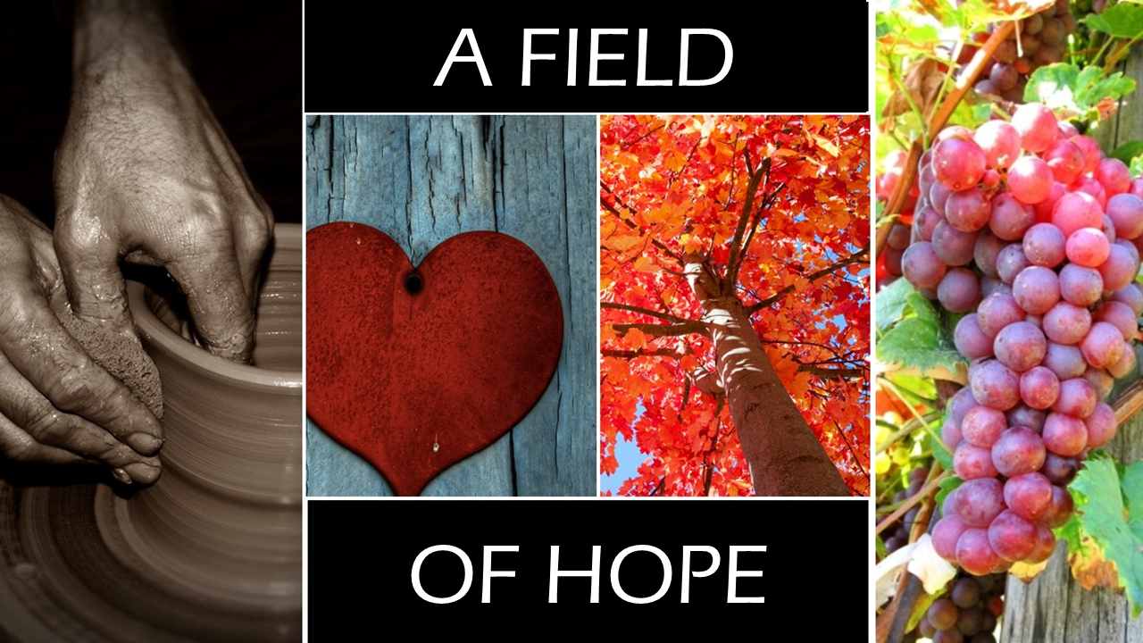 A Field of Hope Image